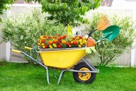 Як обрати найкращу садову тачку?