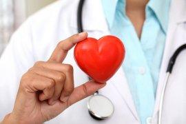 Фактори ризику серцево-судинних захворювань