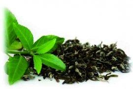 Що ми знаємо про чай?